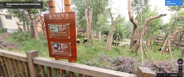 google maps google street view zoo parcs animaliers monde China's Chengdu Research Base of Giant Panda Breeding