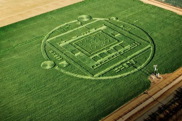 NVIDIA-crop-circle