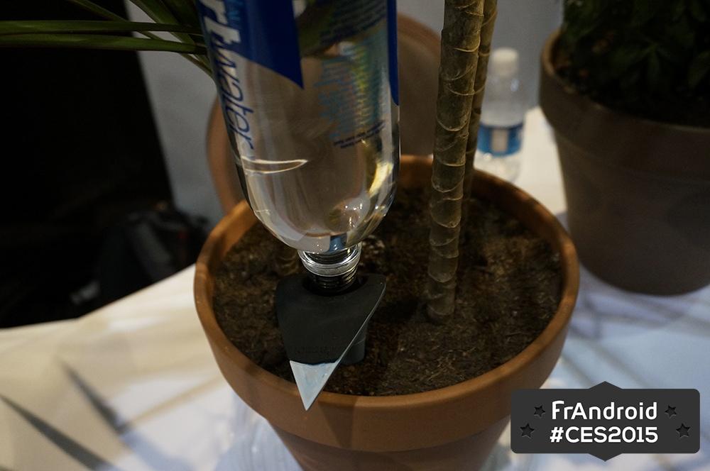 Avec ses pot et h2o parrot compte arroser vos plantes - Arrosage automatique bouteille ...
