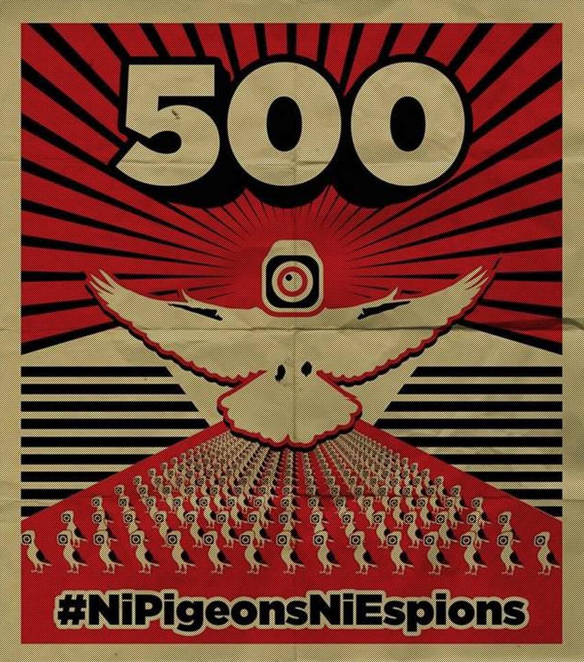 nipigeons ni espions