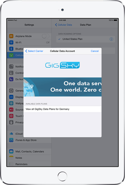 GigSky Apple SIM