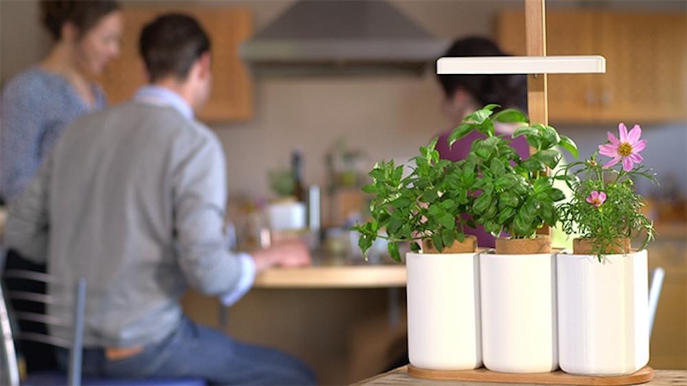Et si votre jardin tait connect frandroid for Jardin lilo
