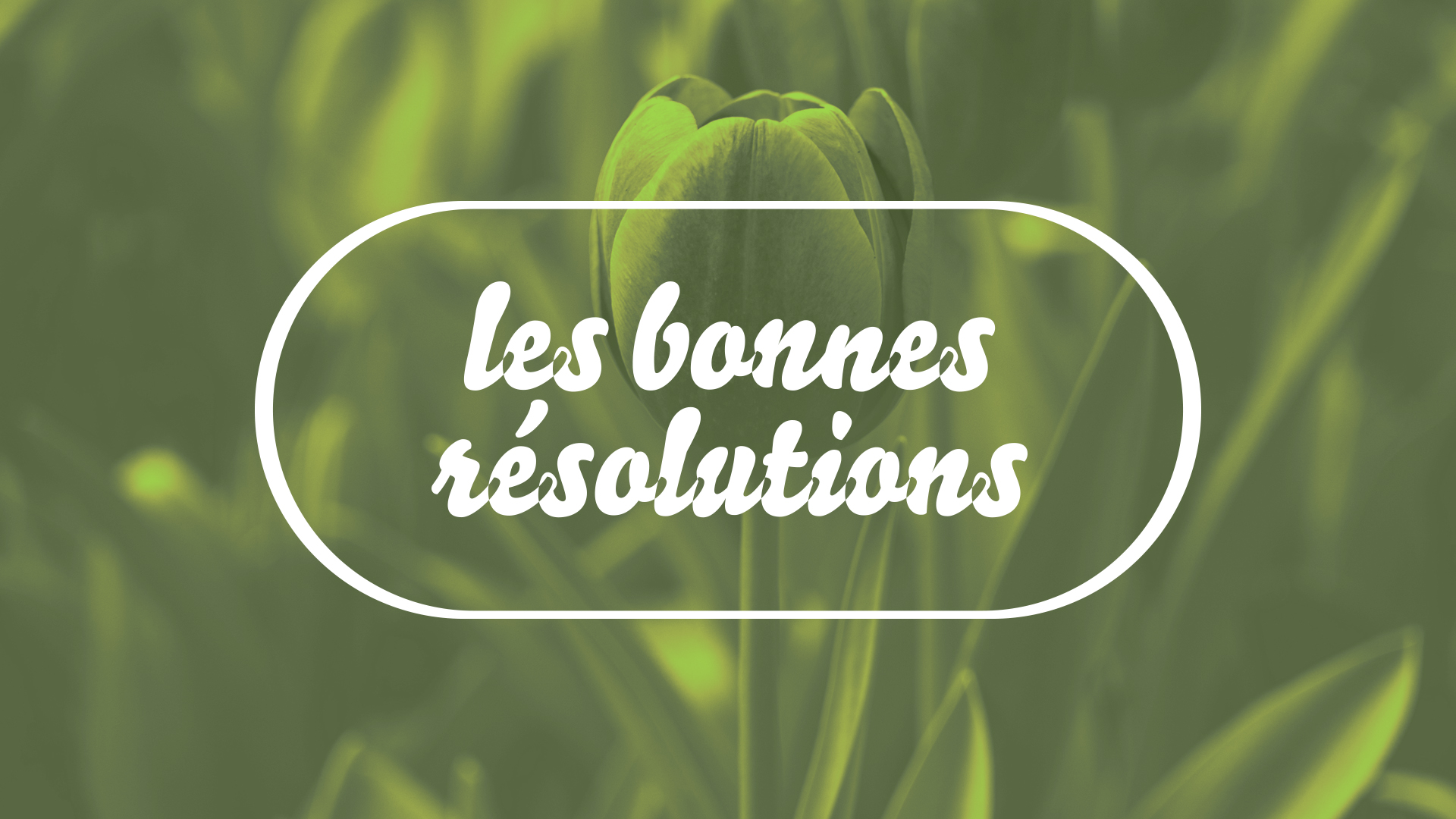 bonne resolutions_flower