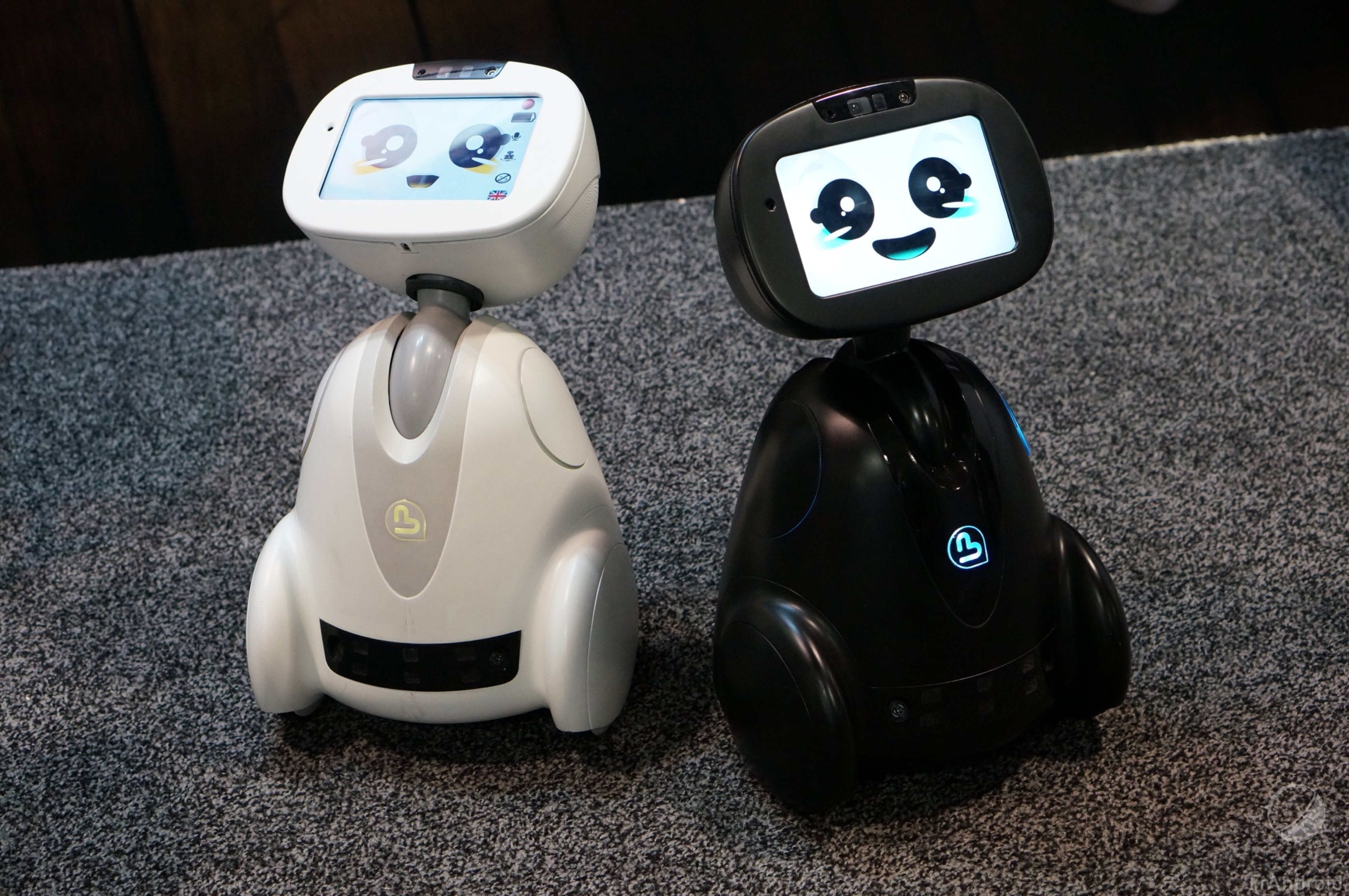 buddy le robot tout faire sous android frandroid. Black Bedroom Furniture Sets. Home Design Ideas