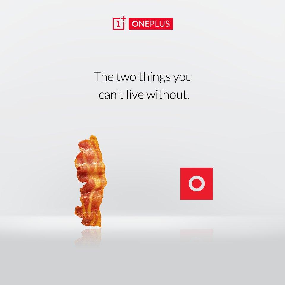 oxygen-oneplus-bacon