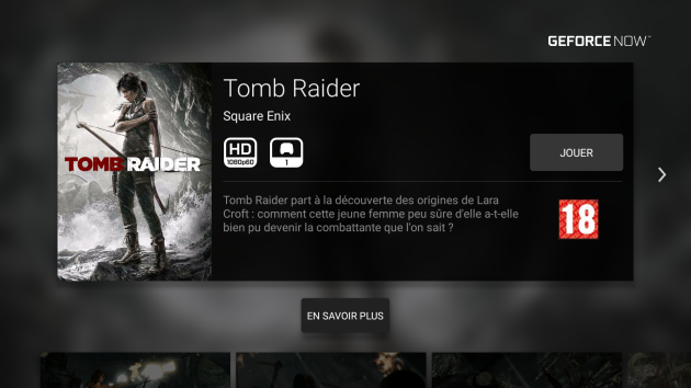 Tomb raider Shield