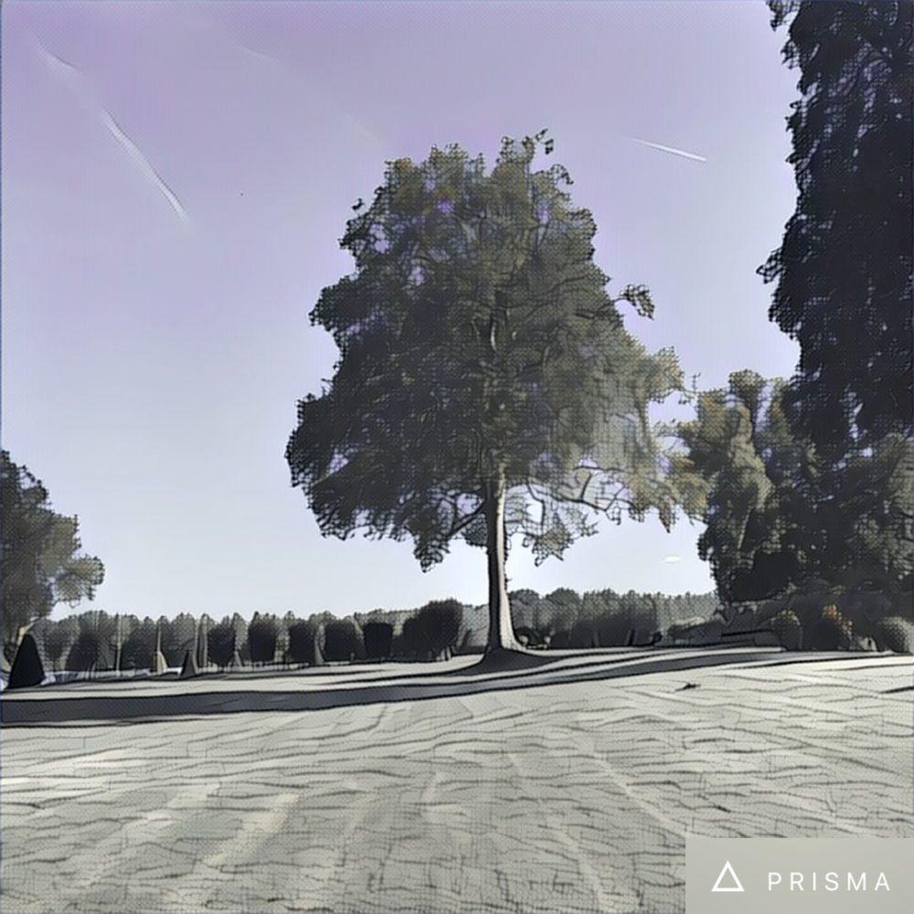 prisma app 4