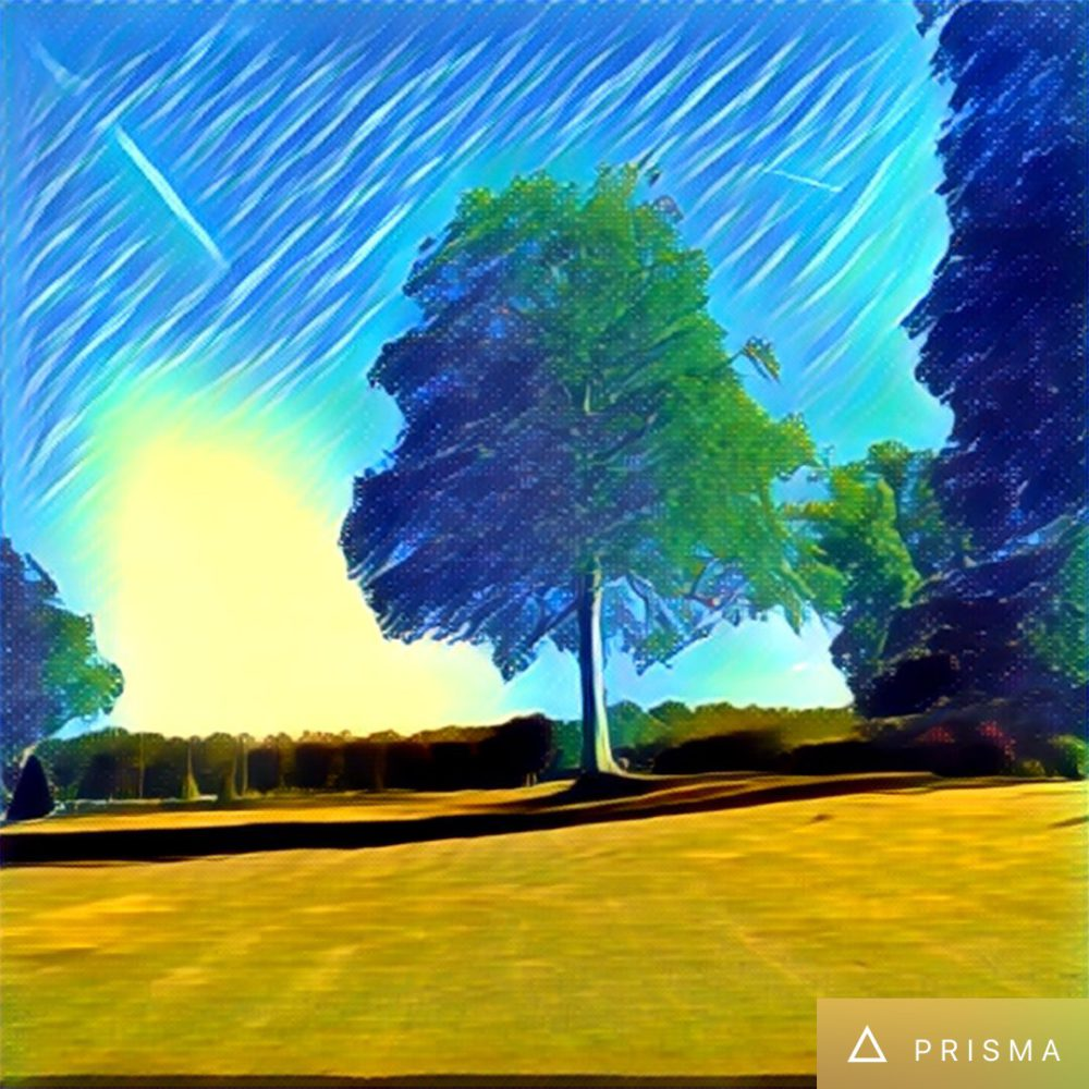 prisma app 5