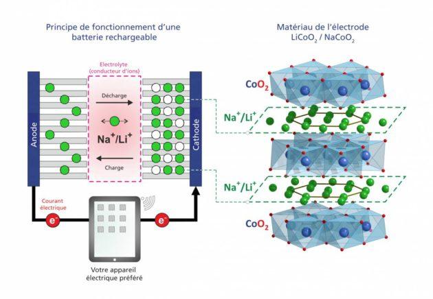 Principe de fonctionnement d'une batterie lithium-ions ou d'une future batterie sodium-ions (à gauche), et structure du matériau de la cathode (à droite). Le matériau de la cathode est composé de couches d'oxyde de cobalt (CoO2) entre lesquelles se trouvent des couches d'ions mobiles de lithium, respectivement de sodium.