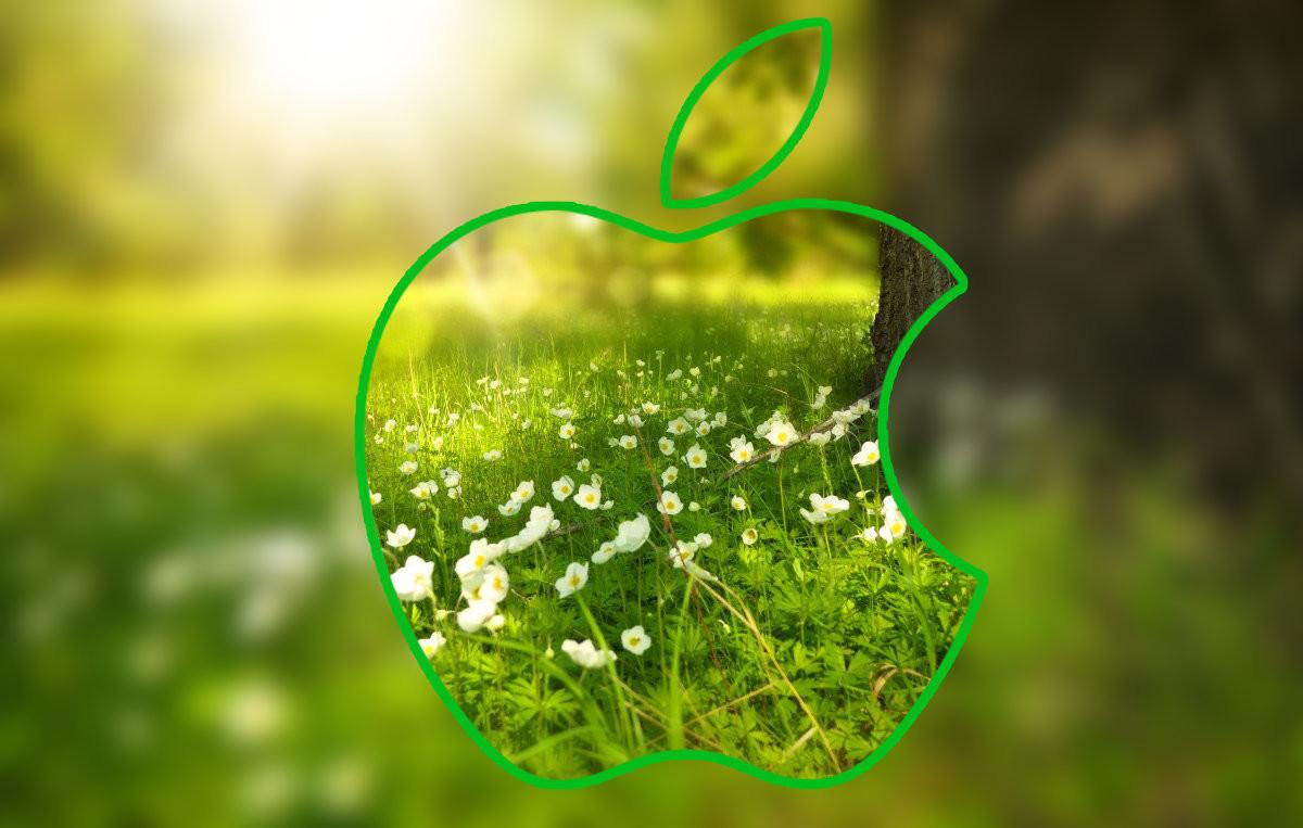 Apple intraitable sur la question écologique, même pour ses fournisseurs