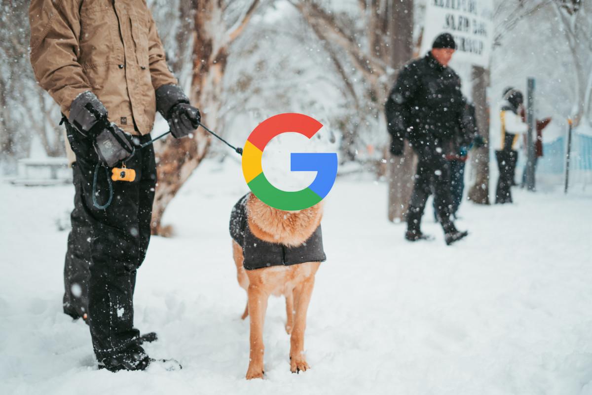 Les données récoltées par Google aident la police américaine