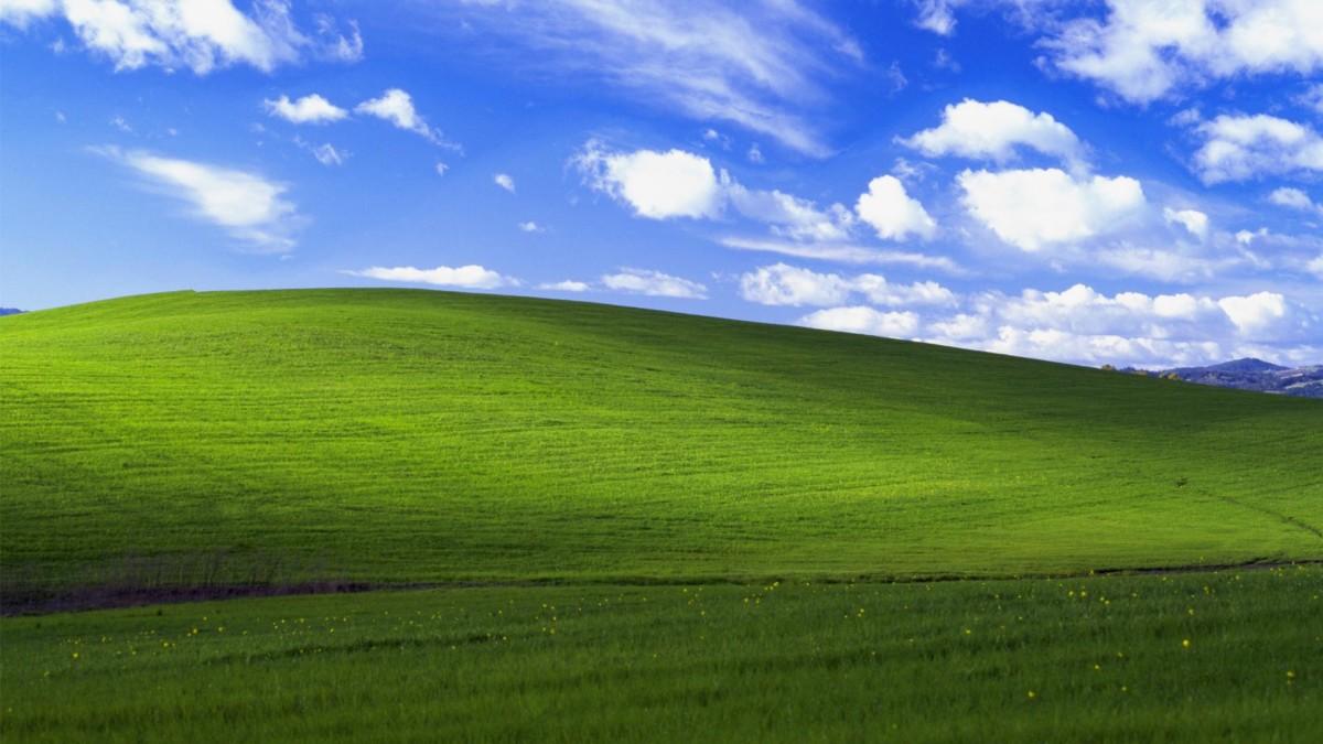 Au travers d'un thème gardé secret, Windows XP aurait pu adopter une apparence très différente de celle qu'on lui connait…