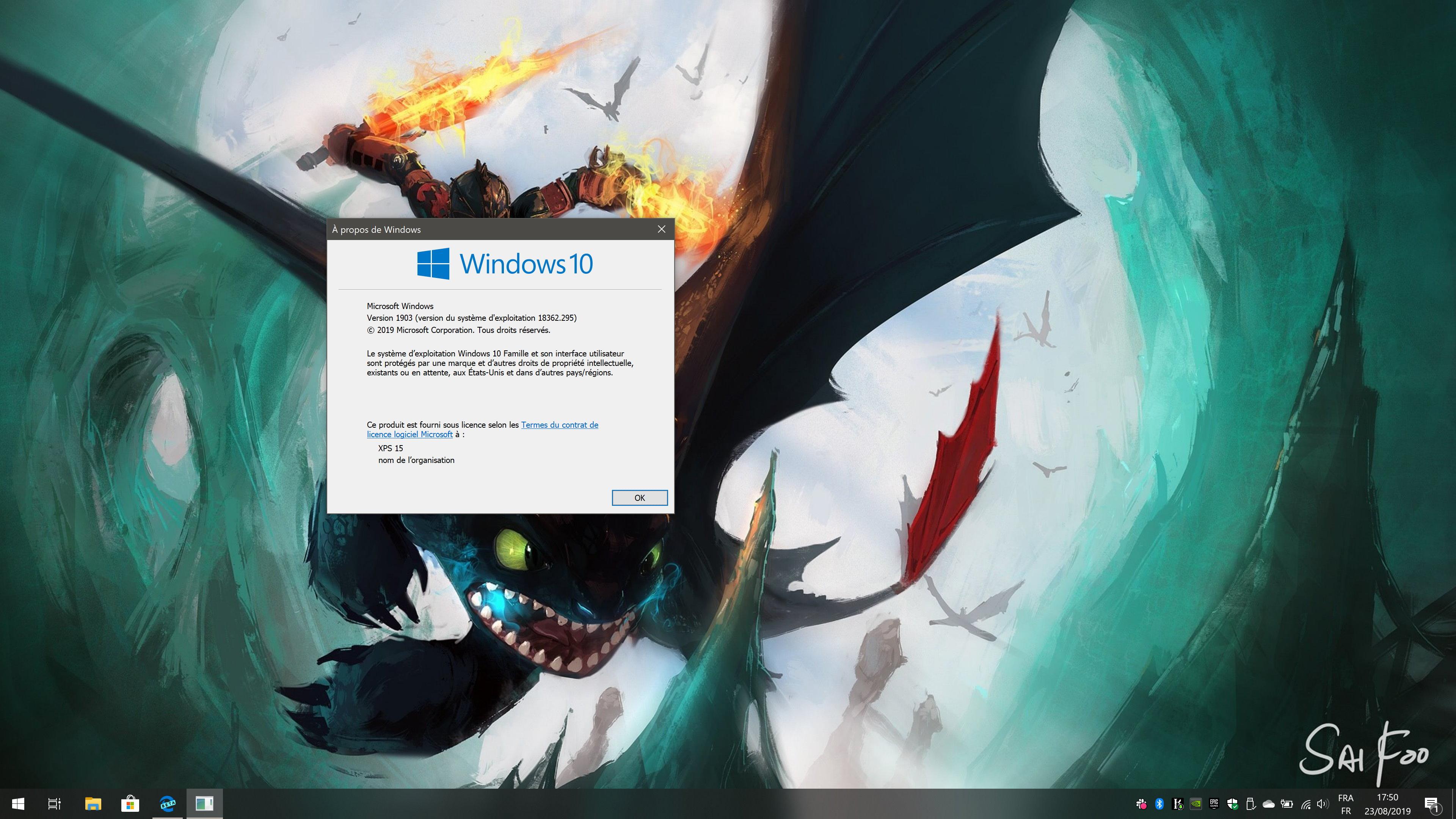 Le Windows 10 installé n'a pas de bloatware, mais connait quelques problèmes.