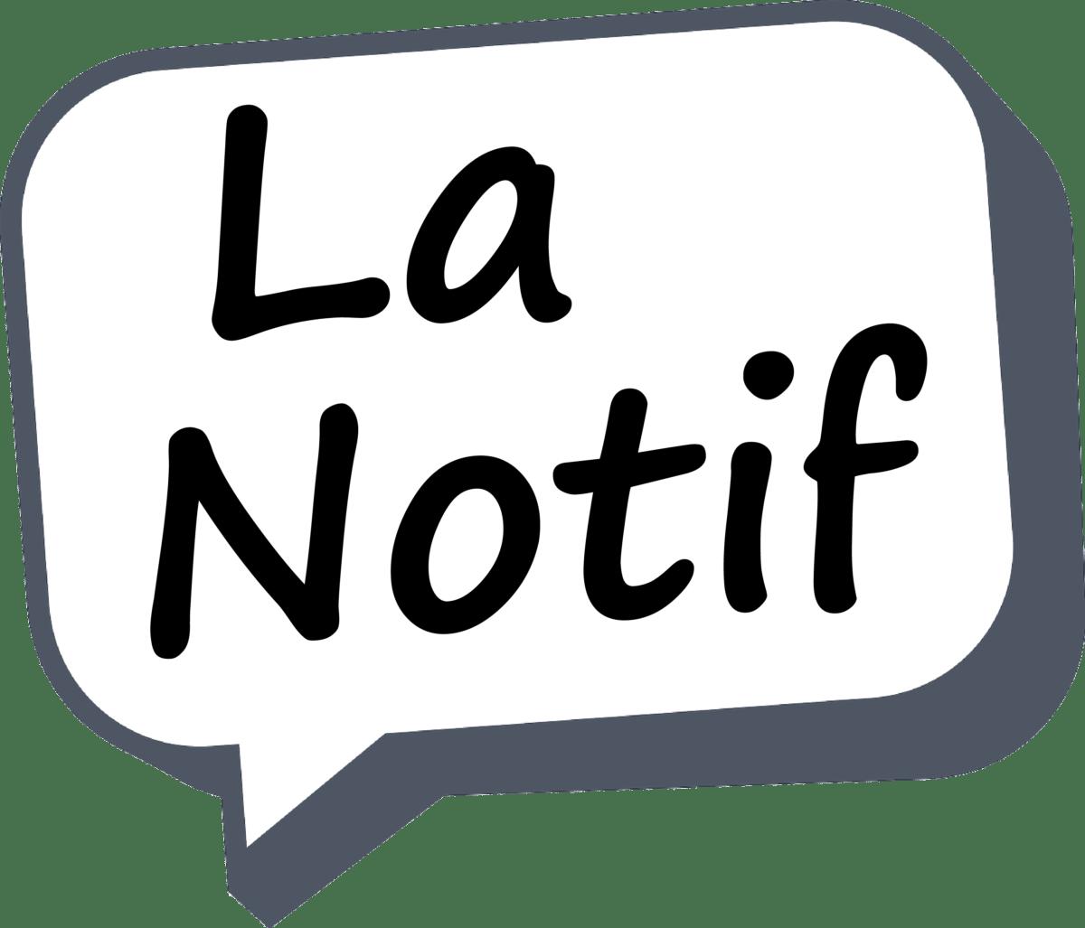 Des jeux de mots stylés et un bug Google – La Notif
