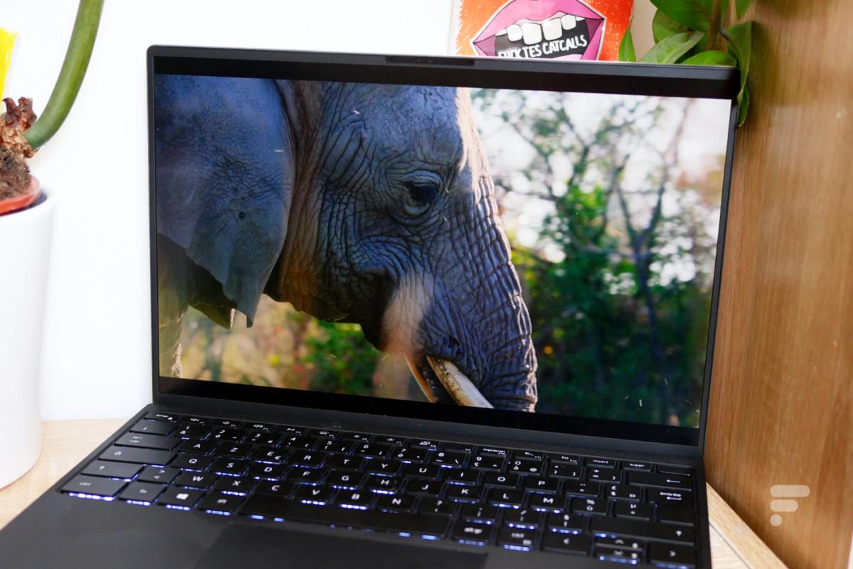 Écran du Dell XPS 13 2020
