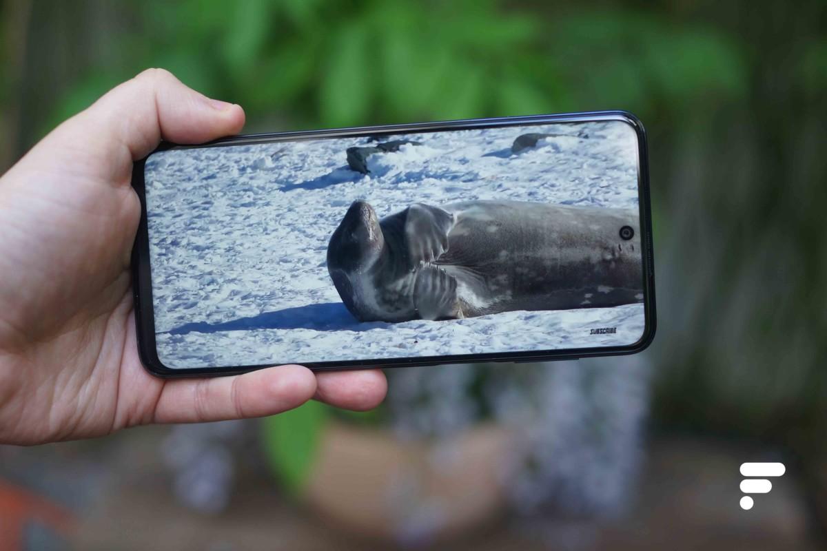 Écran du Xiaomi Redmi Note 9S