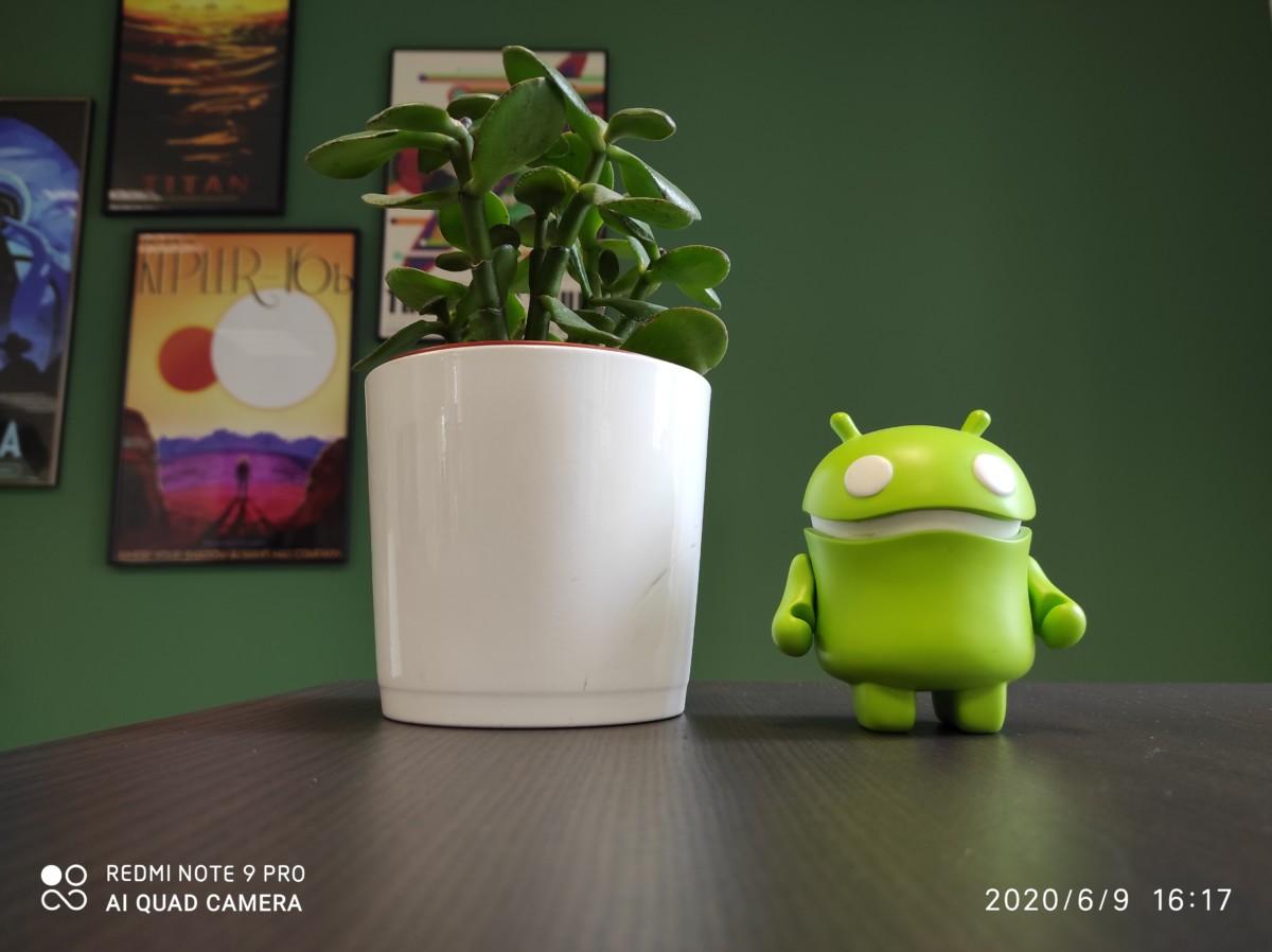 Le filigrane sur une photo prise avec un smartphone Xiaomi