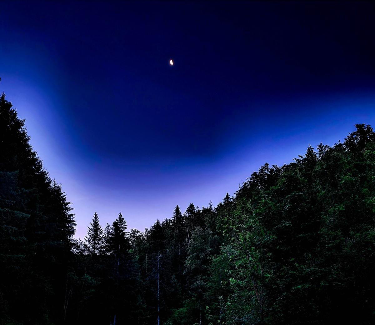 L'heure bleue avant l'aube. Photo prise au GalaxyS20+, en utilisant ici le mode Nuit de l'application photo.