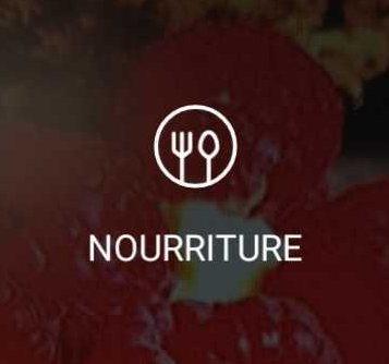 Le mode « Nourriture »