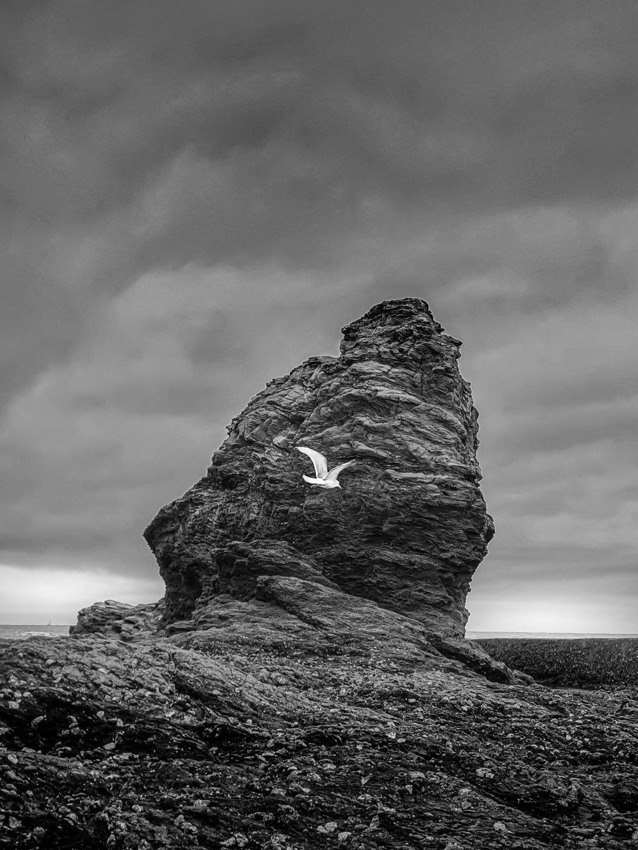 En passant la photo en noir et blanc, on réduit l'espace colorimétrique de la photo… lui conférant un aspect minimaliste très réussi.