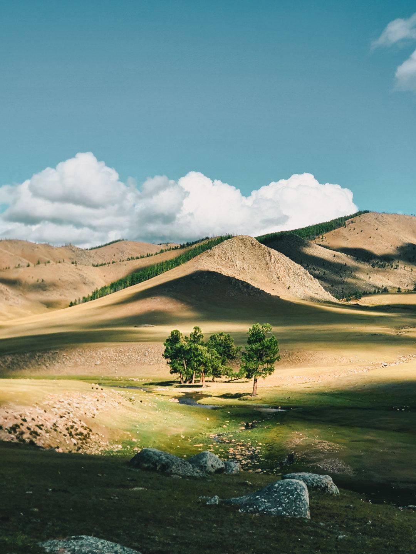 Exemple de photo minimaliste trichrome: 3 couleurs dominantes, le vert, l'orange et le cyan. Photo prise avec le Samsung Galaxy Note10+.