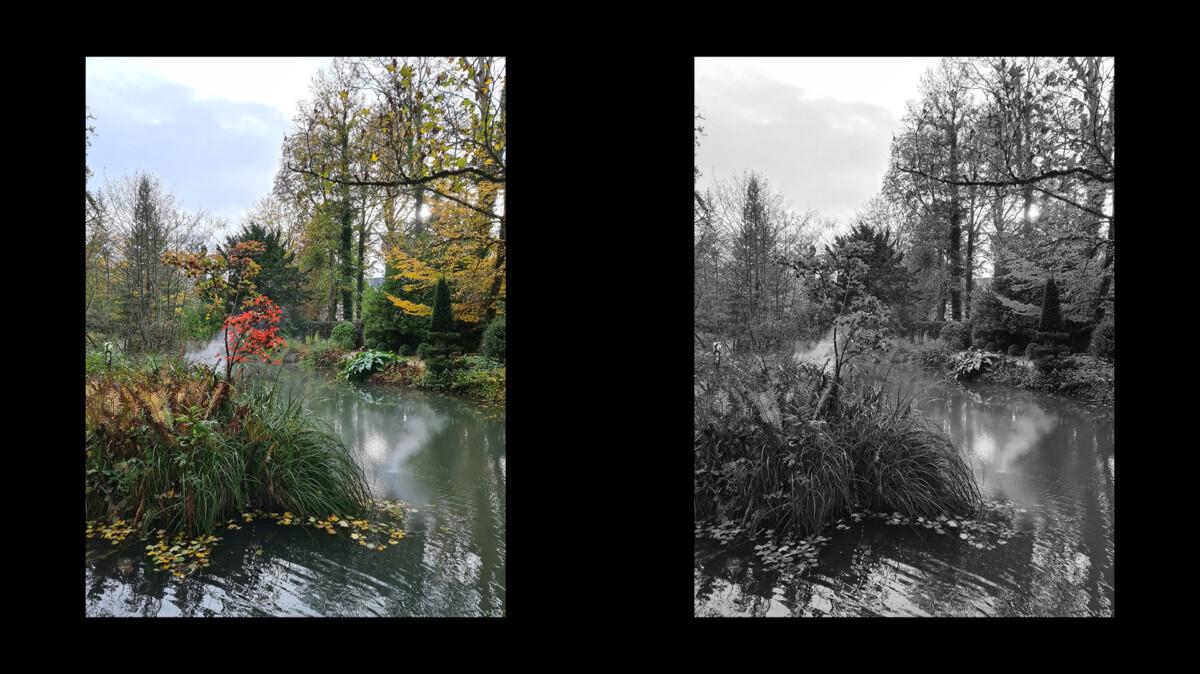 Le rouge, qui avait un intérêt sur la photo en couleur, ne donne plus rien sur la version en noir et blanc.