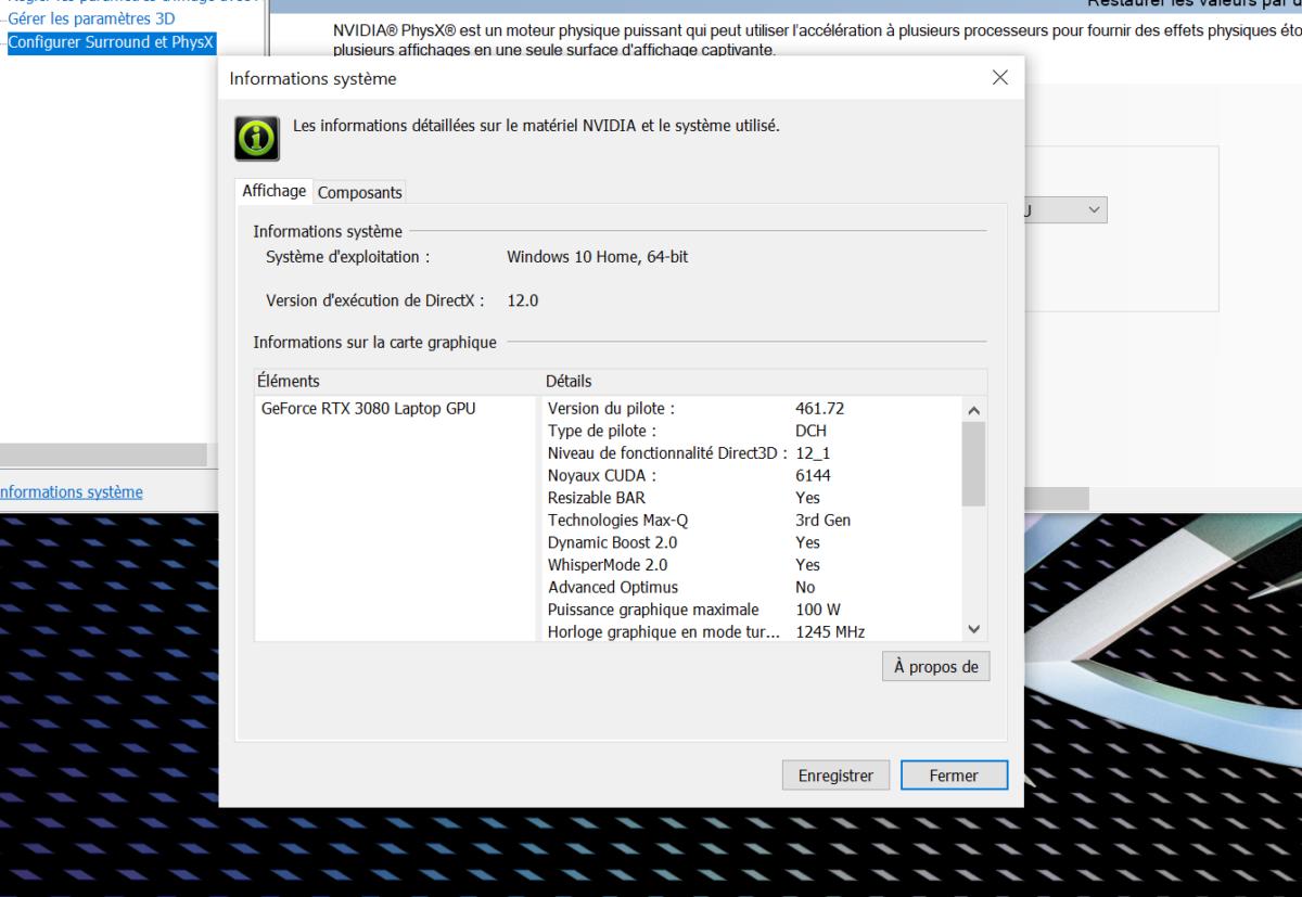 Vous pouvez vérifier les options GeForce RTX sur cet écran