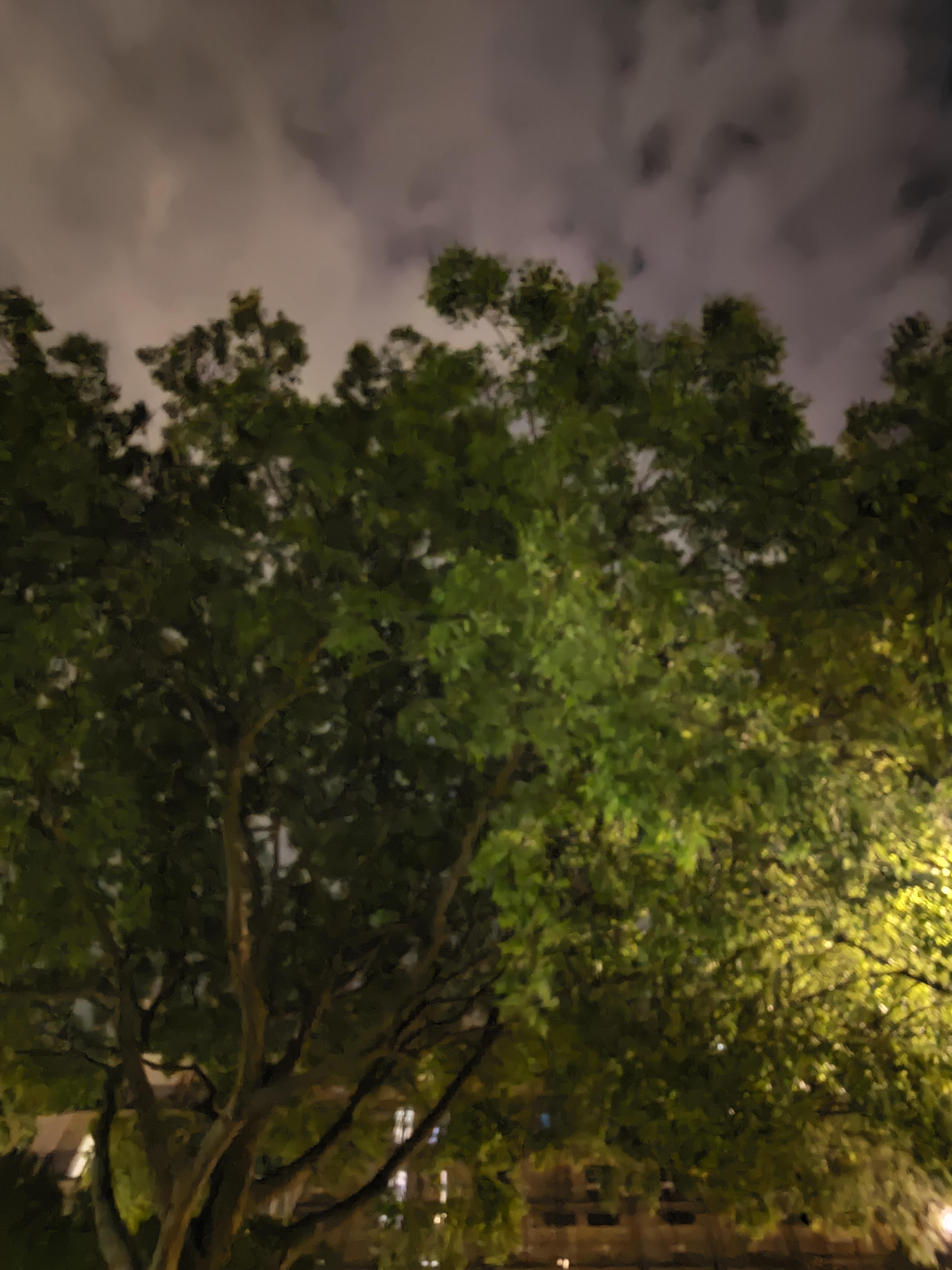 Photo de l'Asus Zenfone 8 en mode automatique, en ultra grand-angle