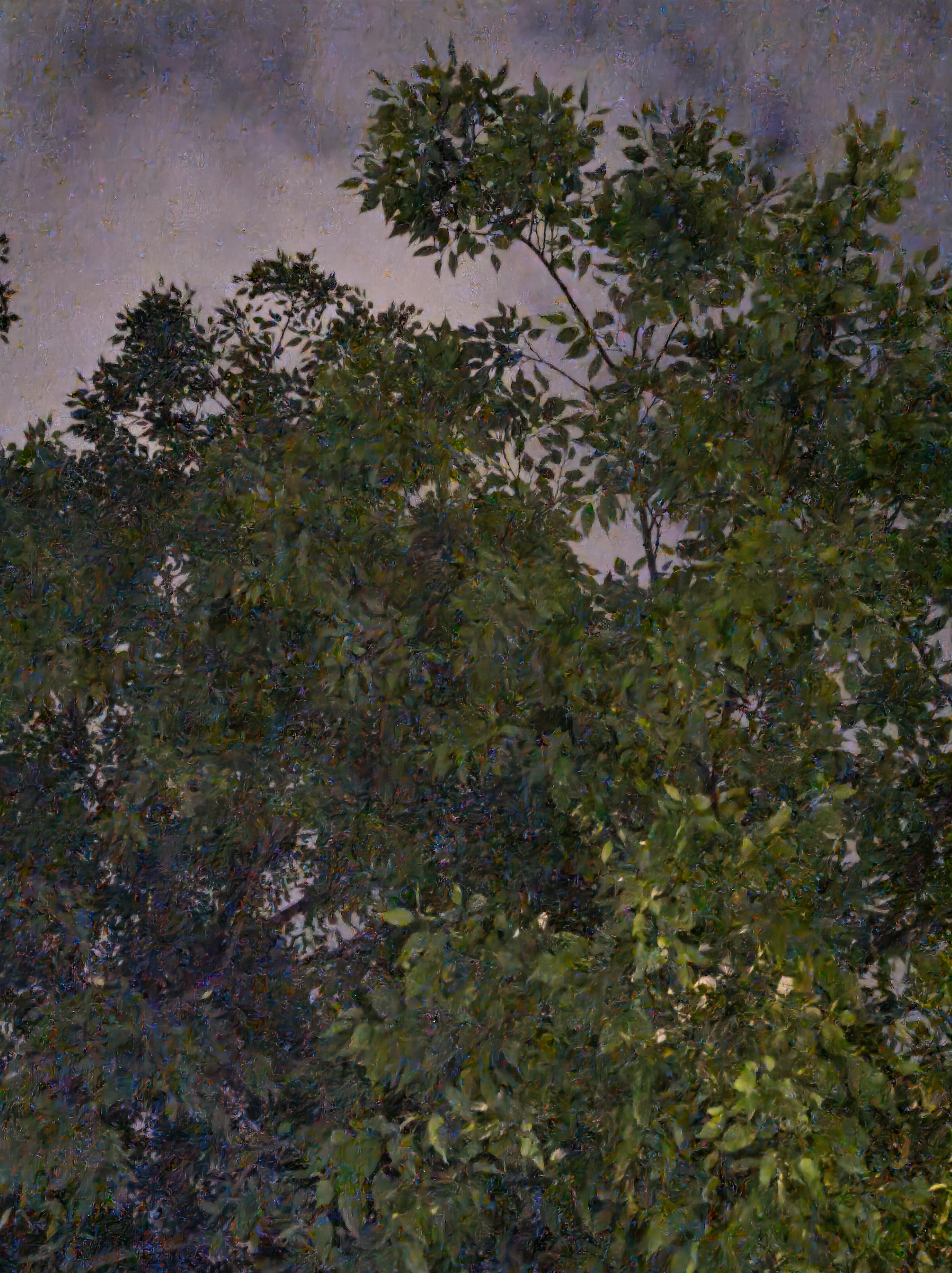 Photo de l'Asus Zenfone 8 en mode automatique, en zoom numérique x2