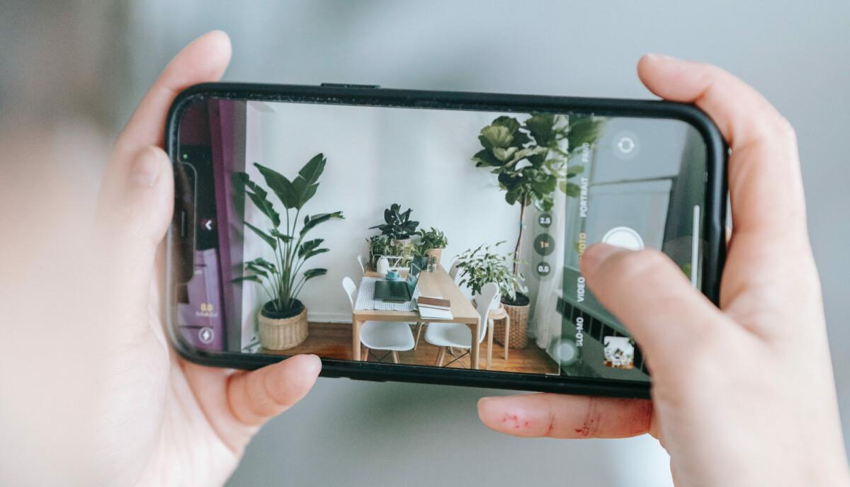 "Votre smartphone permet de reconnaître de nombreuses plantes // Source : <a href=""https://www.pexels.com/fr-fr/photo/femme-smartphone-internet-photo-6912832/"">Teona Swift (via Pexels)</a>"