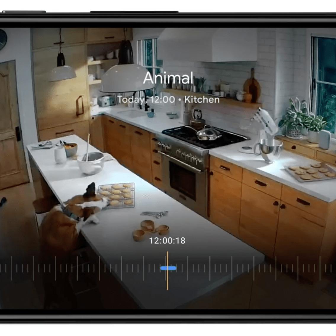 Vous pouvez afficher en live n'importe quel flux vidéo des Nest Cam