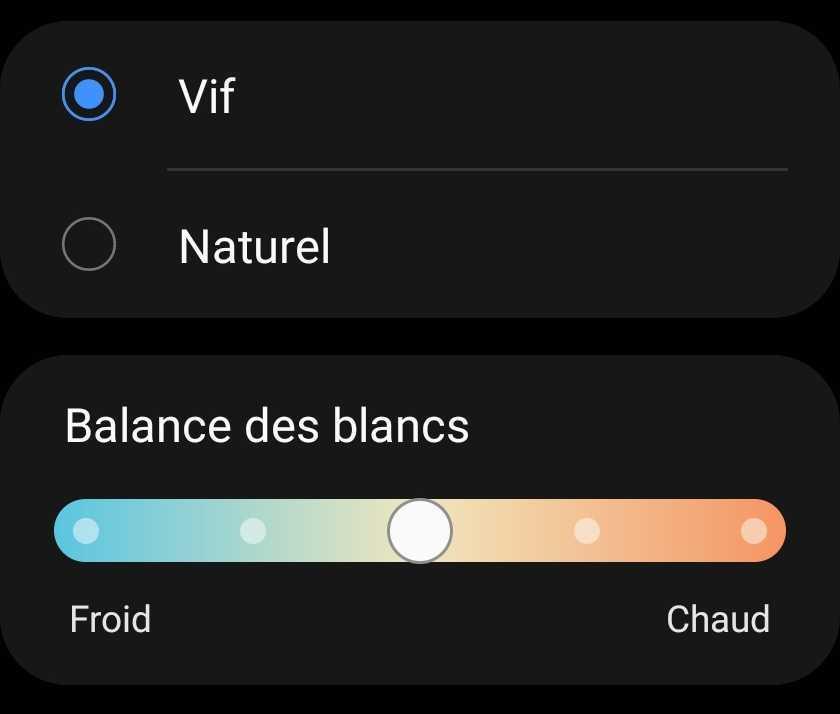 Options d'écran du Galaxy Z Fold 3