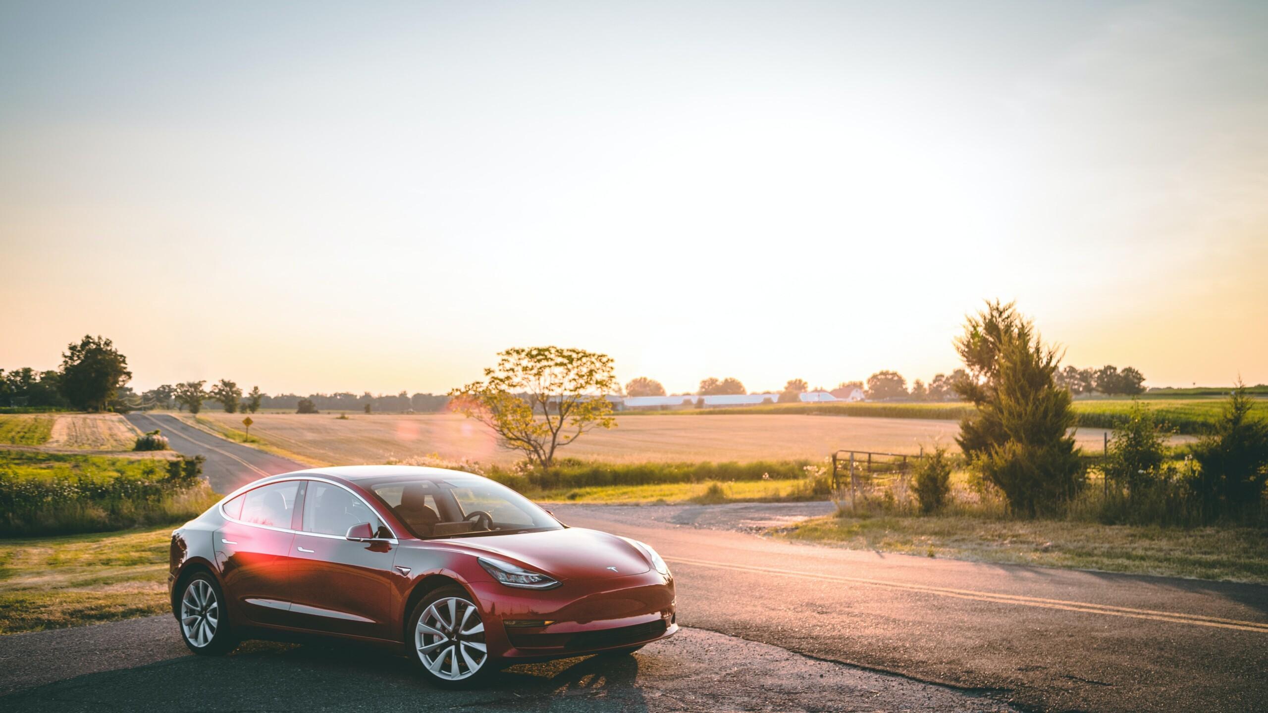 Tesla supprime son programme de parrainage : pourquoi et quelle alternative?